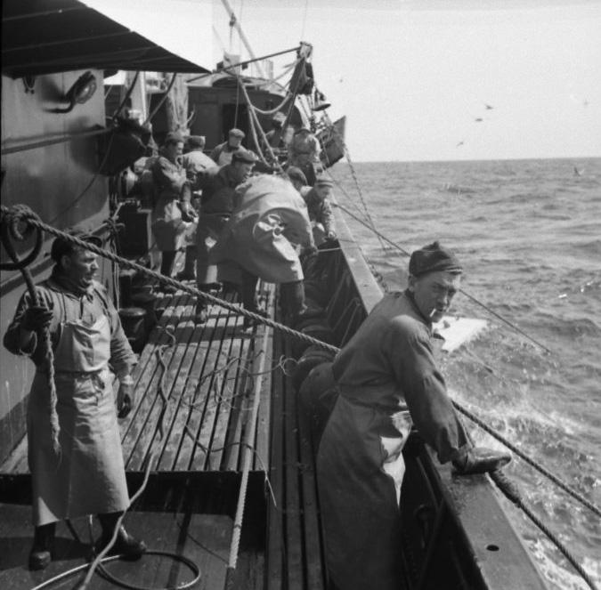 Scènes de Mer - F. Miellot - Archives Municipales BL