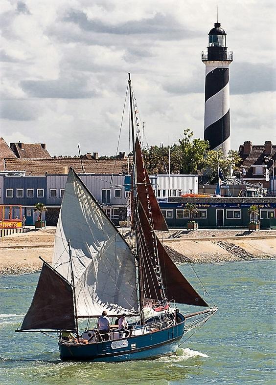 Etoile de Mer - photo F BERTOUT